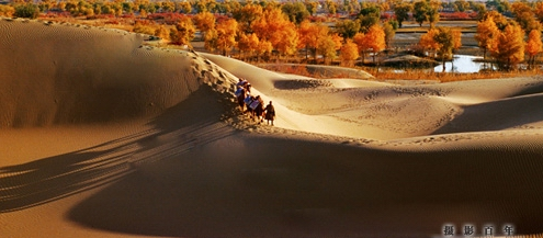 塔里木盆地的景色,一年四季